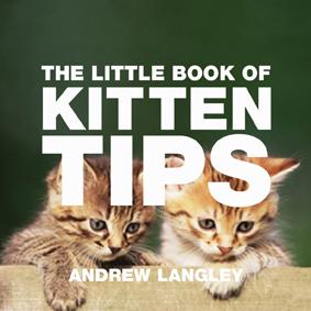 The Little Book of Kitten Tips